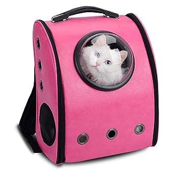 Cutowin - Mochila portátil para transportar mascotas, gato, perro, transpirable, con forma de cápsulas de seguridad, bolsa de viaje: Amazon.es: Productos ...