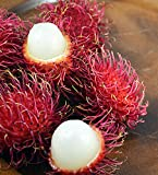 Fresh Rambutan Fruit (5lb)