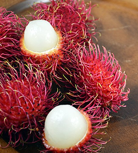 Fresh Rambutan Fruit (5lb) by Ecoripe Tropicals (Image #6)
