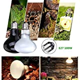 100w Day Light UVA Basking Heat Spot Lamp Bulb Heater Reptile Animal Grow Nurse (WHITE)