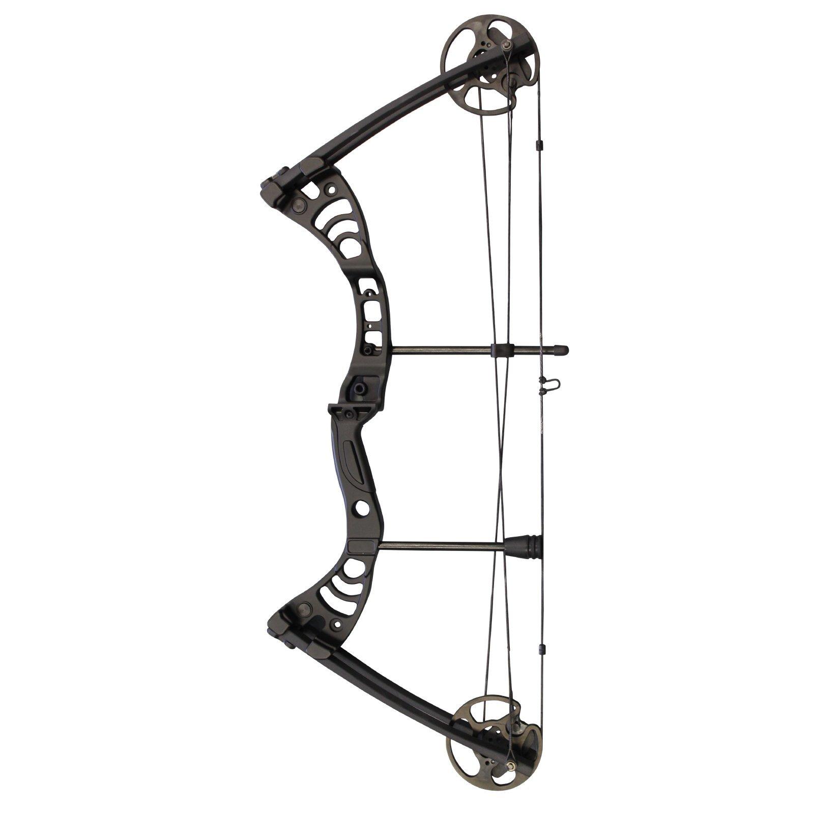 Southland Archery Supply SAS Scorpii 55 Lb 32'' Compound Bow (Black)