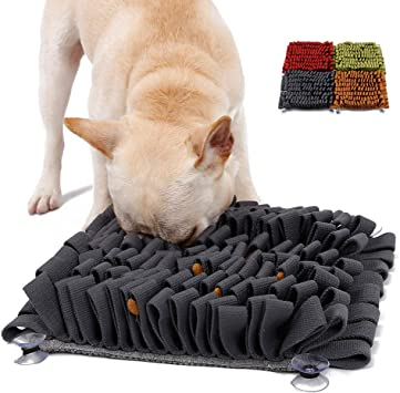 Tapis Chiens Fouille