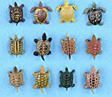 Yiping 12Pcs Mini Turtle Fairy Garden Simulation Turtle Ornaments for Bonsai Ocean Landscape Decor