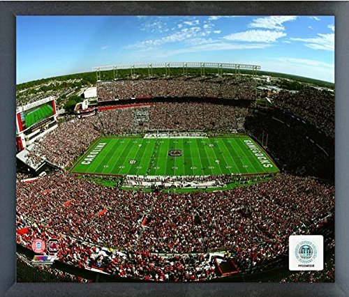 (Williams-Brice Stadium South Carolina Gamecocks Action Photo (Size: 17