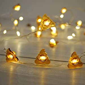 Brooklyn Lighting Company 12 Foot LED Wire Lights Strip with 36 Poop Emoji Shaped Bulbs Battery Operated String Lights (12FT, Poop Emoji)