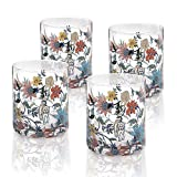 Botswana Botanical Old Fashioned Glass Set of 4 giftboxed Review