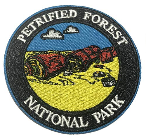 Explore Petrified Forest National Park 3