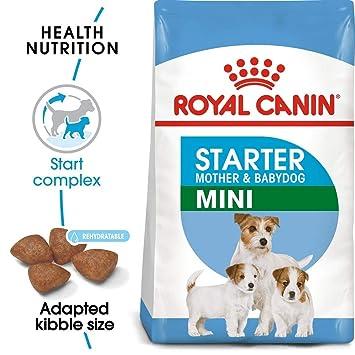 ROYAL CANIN Mother and Babydog Mini Starter - Comida para perros raza pequeña