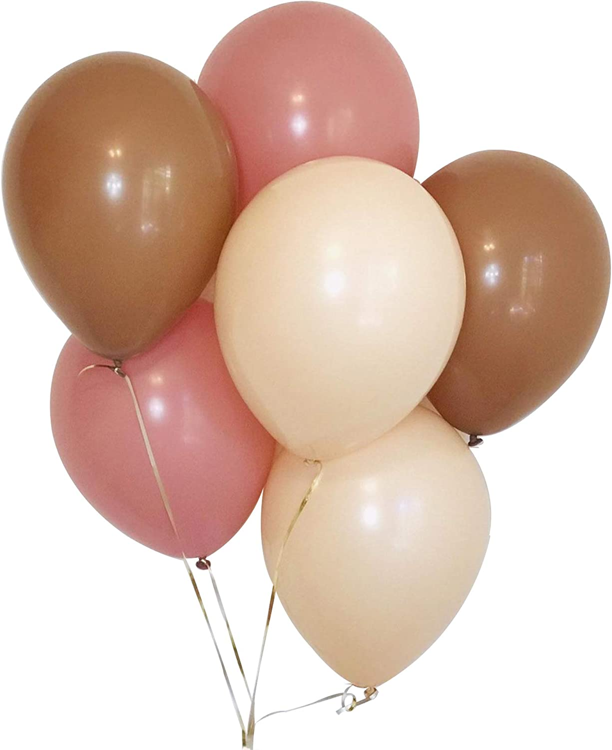 60PCS Blush Nude Cream Dusty Rose Mauve Pink Tan Brown 10 Inch Latex Balloon Backrop Arch Garland for Boho Nuetral Baby Shower Rustic Fall Bridal Shower Wedding Birthday Party Decoration
