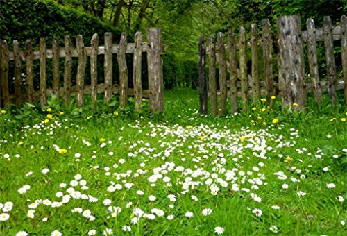 (AOFOTO 7x5ft Spring Garden Daisy Flower Backdrop Rustic Wood Fence Summer Meadow Photography Background Forest Wonderland Grass Florets Country Hiking Suburbs Picnic Girl Boy Scouts Photo Studio Props)