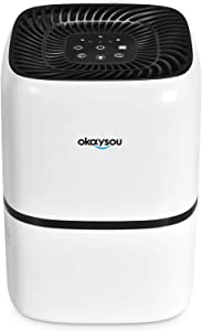 Best Air Purifier For Kitchen Smells Reviewed In 2020 – Top 5 Picks! 2