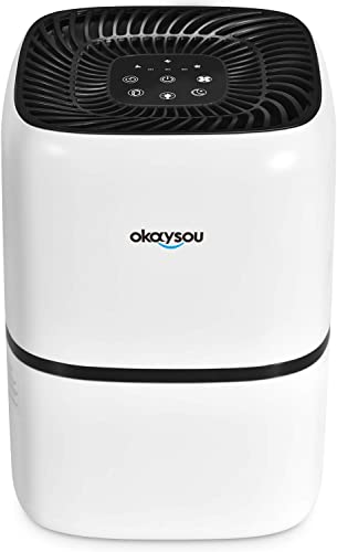 Okaysou AirMic4S Medical Grade Air Purifier for Home Pets, Smokers, Odors, True HEPA H13 Filter, 24dB Air Cleaner for Bedroom, Removes Pet Hair Dust Pollen Smoke VOCs,300 Sq. Ft. 5-Yr Warranty, White