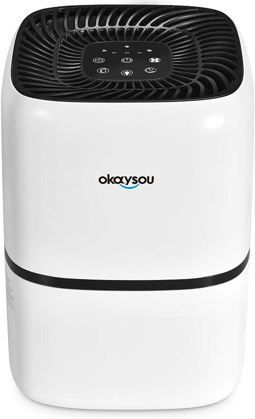Okaysou AirMic4S Purificador de aire de grado médico H13 para ...