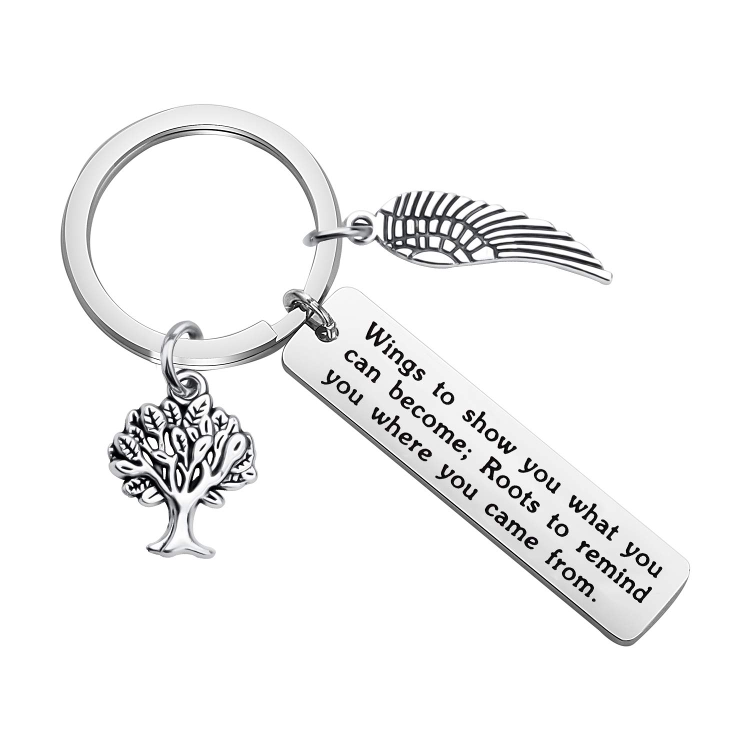bobauna Inspirational Keychain Wings to Show You What You Can Become Encouragement Jewelry Going Away Gift for Family Teacher Graduate