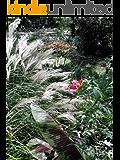 The Rain Garden Handbook Creating a Garden that Captures Rain Water (English Edition)