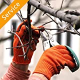 Tree Trimming or Pruning - 2 Trees