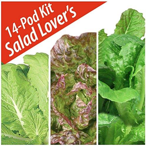 Salad Lovers Seed Pod Kit by Aerogarden (14 (Lovers Seed)