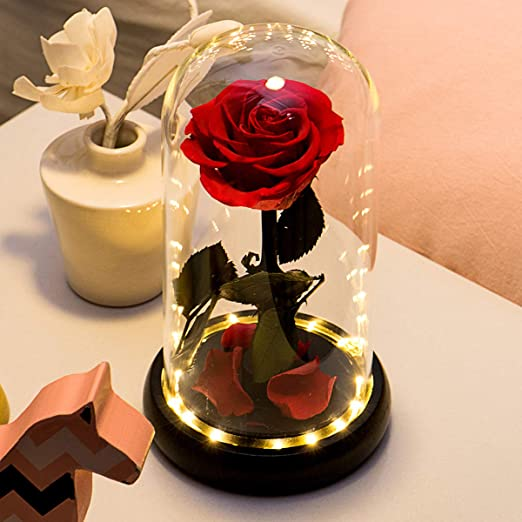 Yamonic Beauty and The Beast Red Rose Handmade Preserved Rose Forever Rose in a Glass Best Gifts for Mothers Day, Anniversary, Wedding, Birthday Gifts ...