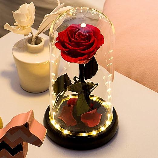 Rosa bella y bestia Yamonic rosa preservada regalos para tu novia san valentin madres cumpleaños navidad esposa regalo de aniversario boda