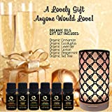 Artsy Aromatherapy Essential Oil Diffuser with TOP ORGANIC KOKO AROMA Essential Oil Gift Set Your Perfect Companion - Promote Health Great Money-Saving and Gift Idea! (ARTSY GIFT SET)