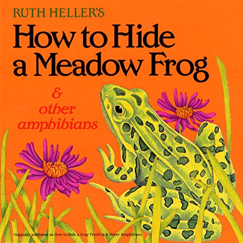 How to Hide a Meadow Frog and Other Amphibians (All Aboard)