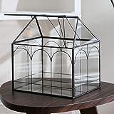 Purzest Glass Terrarium, House Shape Geometric Succulent Terrarium with Swing Lid Tabletop Planter Box Mini Indoor Greenhouse