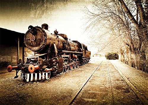 Locomotive Backdrop Ancient Shabby Steam Train Backdrops for Photography Shabby Railroad Tracks Nature Winter Travel Photo Background Kids Adults Portraits Studio Props ()