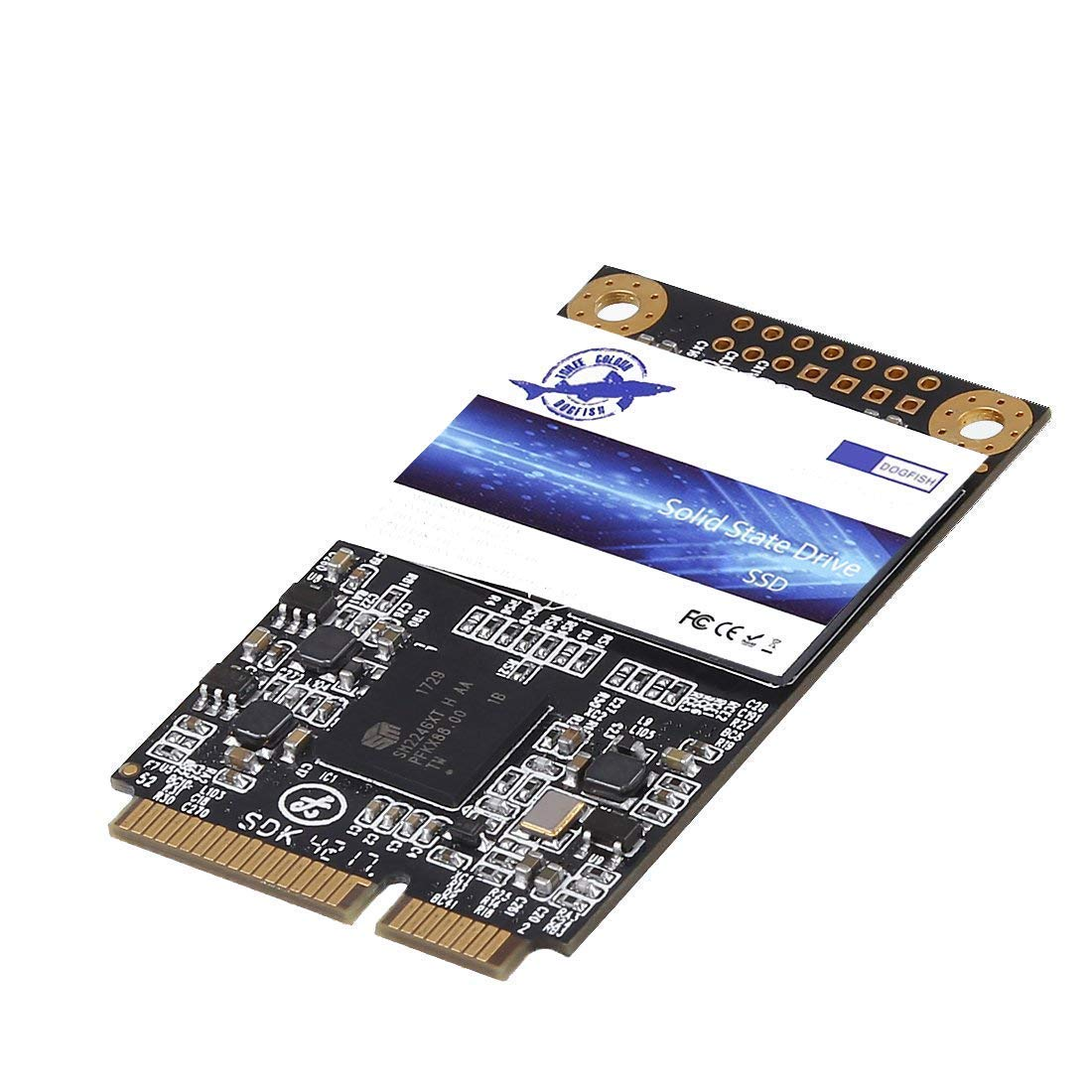 Dogfish SSD Msata 250GB Internal Solid State Drive PC Mini Sata ...