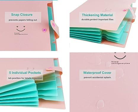 NILEFEN - Carpetas de plástico expandibles para documentos ...