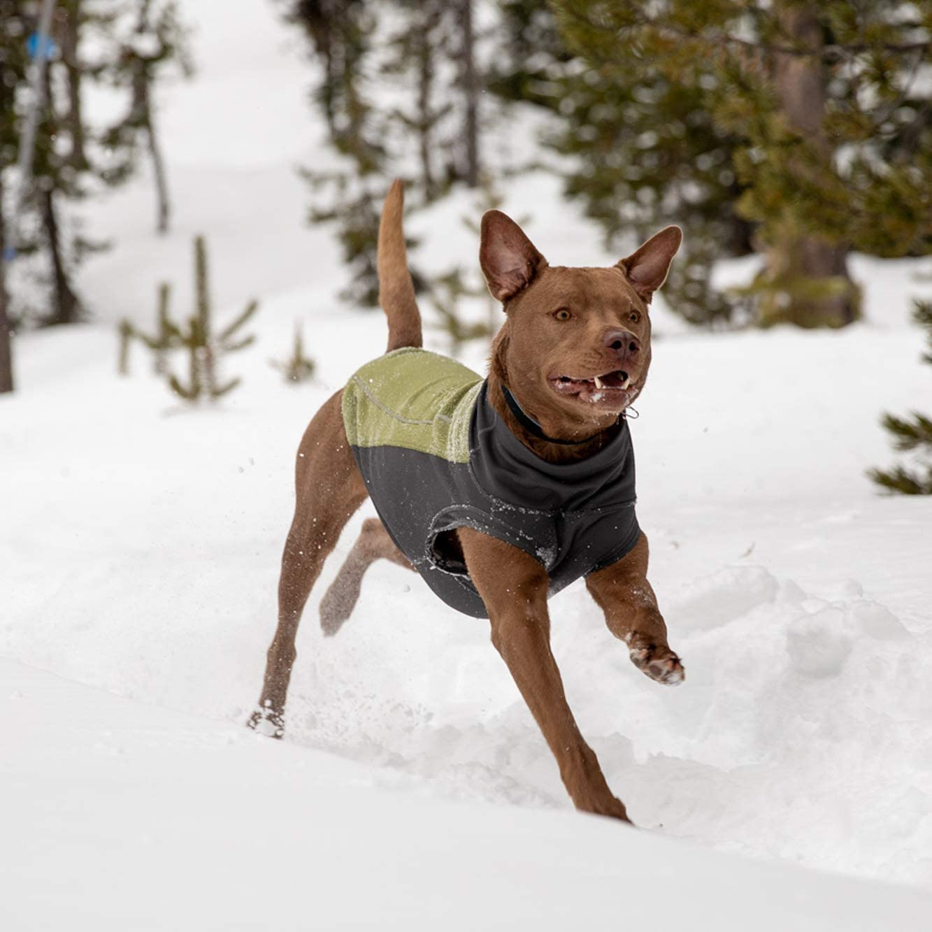 Ruffwear 0555-302s1 Climate Changer Pullover