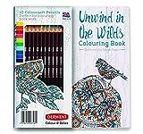 Para libro de colorear y lápices Colorsoft: Color y relajarse - de desenrollar en lo más recóndito por Derwent
