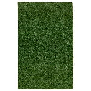 Amazon.com: Ottomanson Garden Grass Collection Indoor/Outdoor ...