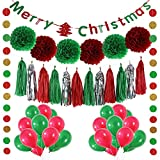 LITAUS Christmas Party Decorations, Balloons , Pom Poms - Best Reviews Guide