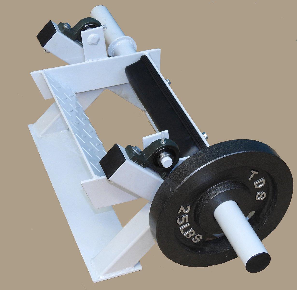 Tibia Dorsi Calf Machine by TDS (Image #6)