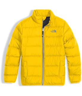 The North Face Boys Andes Jacket (Little Kids/Big Kids)