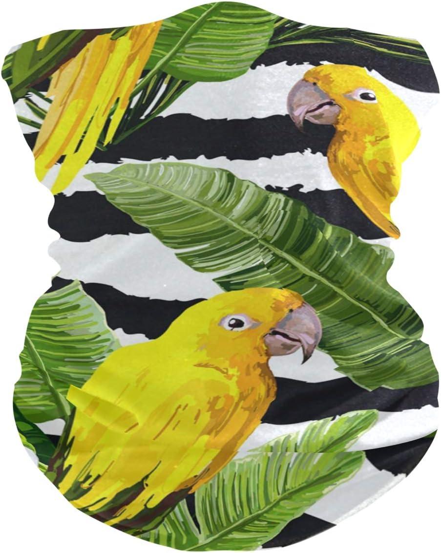 Bandana d/ét/é pour perroquet et perroquet avec filtre lavable Tour de cou multifonctionnel Bandeau magique