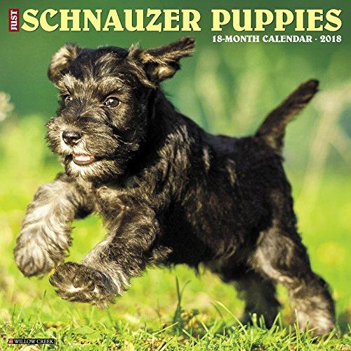 Schnauzer Puppies (Just Schnauzer Puppies 2018 Calendar)
