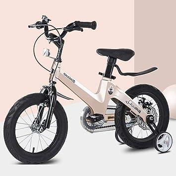 KY Bicicleta Infantil 2-6 Años Niñas Niños, 12 Pulgadas De La ...