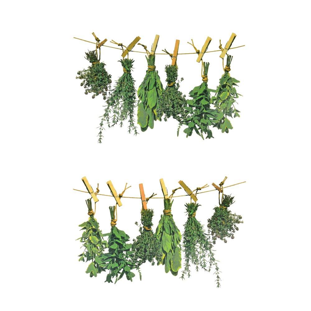 Autocollant pour fen/être fen/être Sticker pour carrelage fen/être EAST-WEST Trading Autocollants de fen/être pour fen/être Motif Herbes dautomne et fen/être