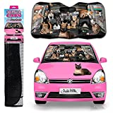 #8: Archie McPhee Auto Sunshade, Car Full Of Cats
