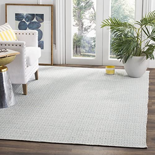 Safavieh Montauk Collection MTK717B Handmade Flatweave Ivory and Light Blue Cotton Area Rug 5 x 7