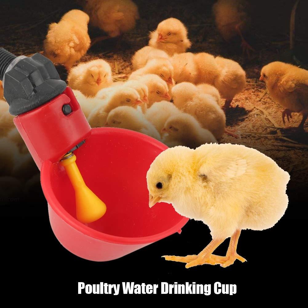for Livestock Chicken Hen Poultry Drinker Poultry Water Drinking Cups Drinker Feeder