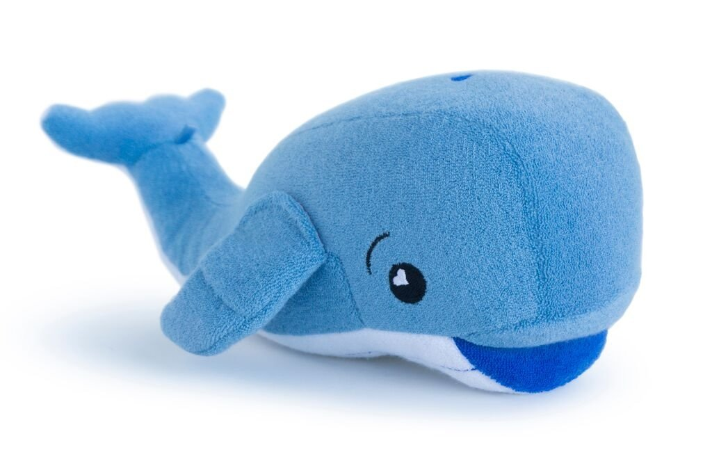 Whale soapsox