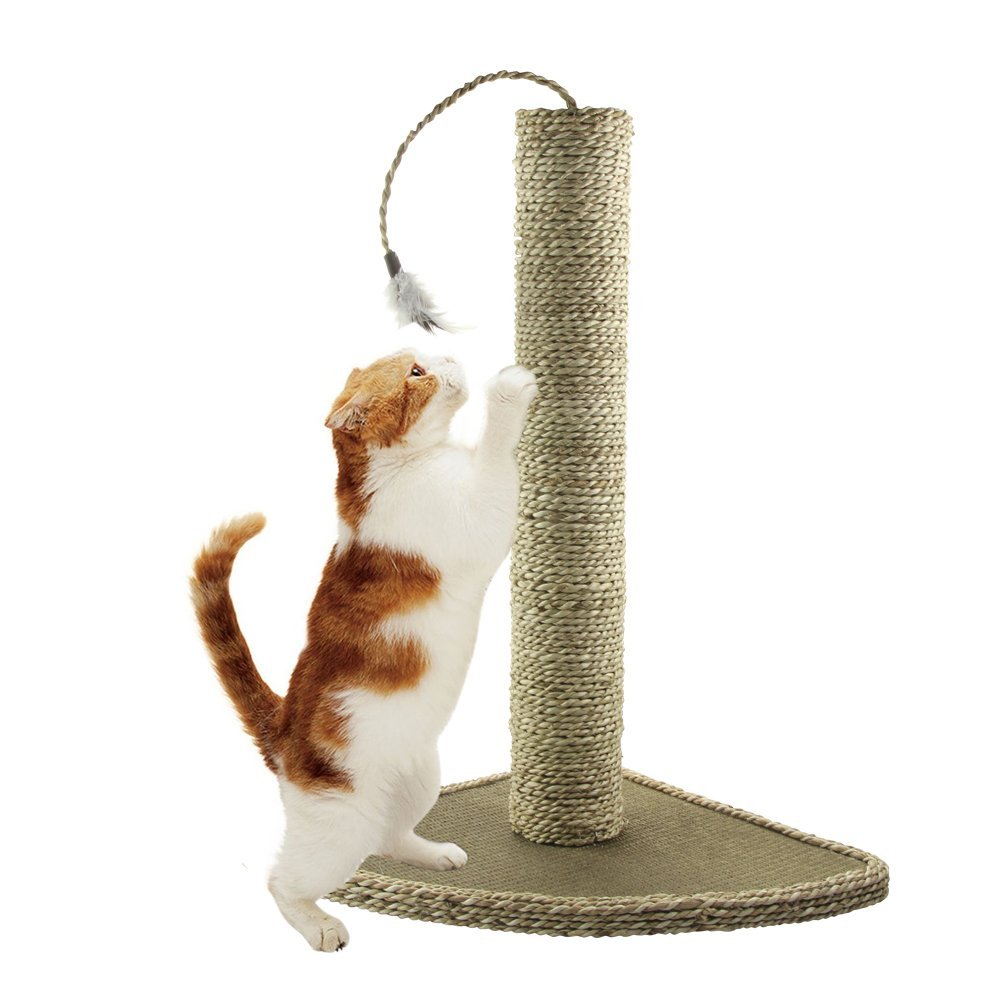 Natural Seagrass Cat Scratching Post, Feather Toy Included, 19-Inch