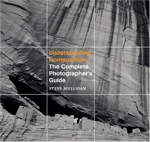 Read Online Understanding Composition: The Complete Photographer's Guide pdf