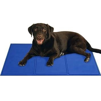 Forpet® - 027651 - Alfombra con gel refrigerante para perros y gatos, azul, talla L, 50 × 90 cm: Amazon.es: Productos para mascotas