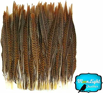 Long Natural Pheasant Tail Feathers Brown Striped