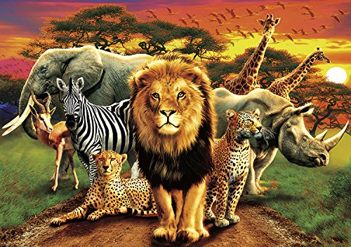 Buffalo Games - Amazing Nature Collection - African Beasts - 500 Piece Jigsaw Puzzle - African Buffalo