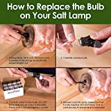 12 15W Watt Himalayan Salt Lamp Bulb Replacement