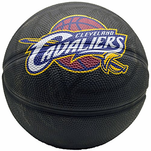 Check Out This Spalding NBA Cleveland Cavaliers Team Colors And Logo Mini Basketball